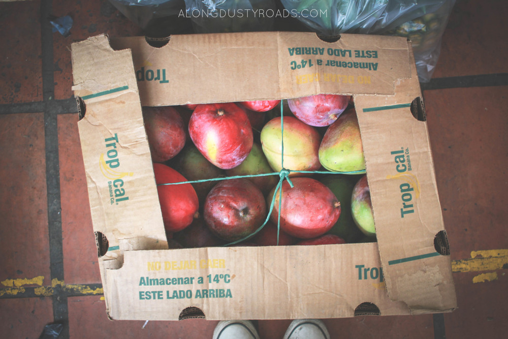 box of mangoes minorista market