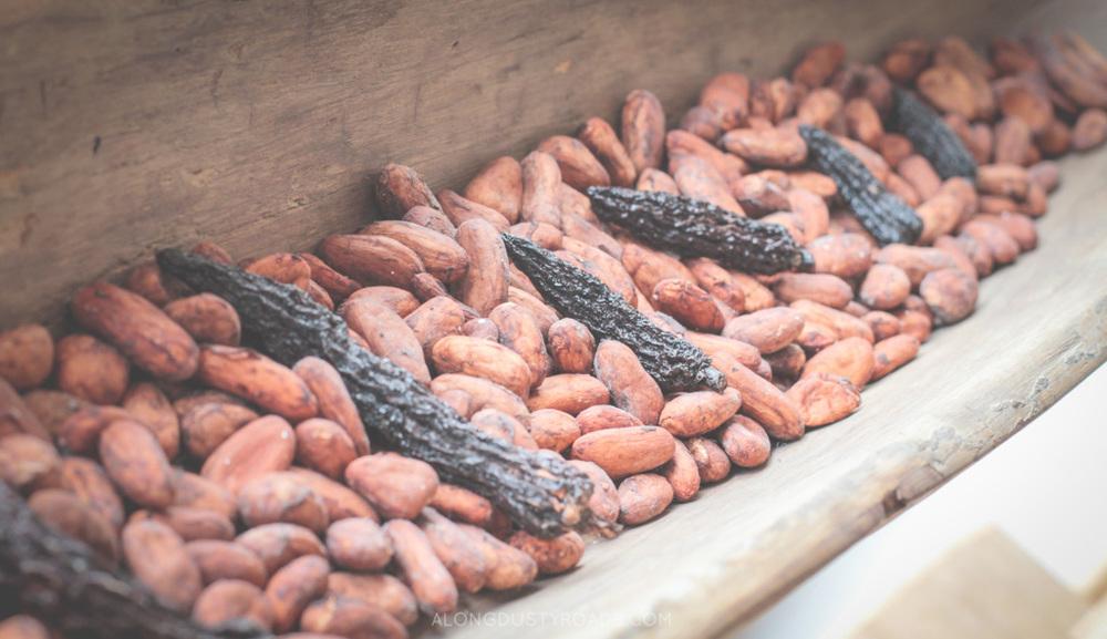 cocoa beans kallari quito ecuador