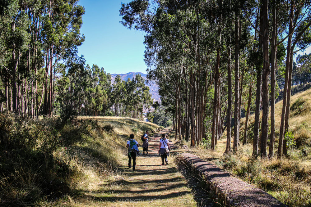 Following the Inca Trail to the road, The Sacred Valley - Peru