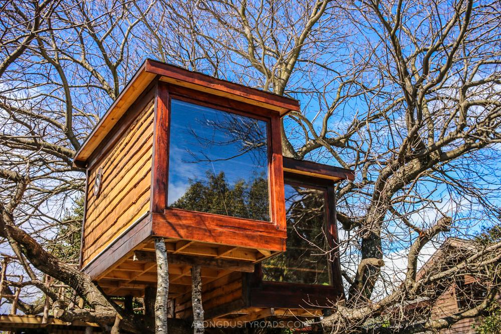 Chili Kiwi Hostel, Pucon - Chile