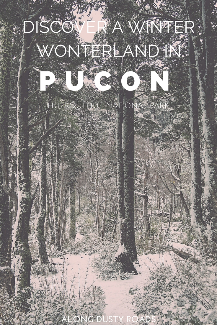 Discovering a Winter Wonderland in Pucon