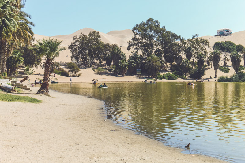 Sand boarding Huacachina Peru - The oasis in Peru