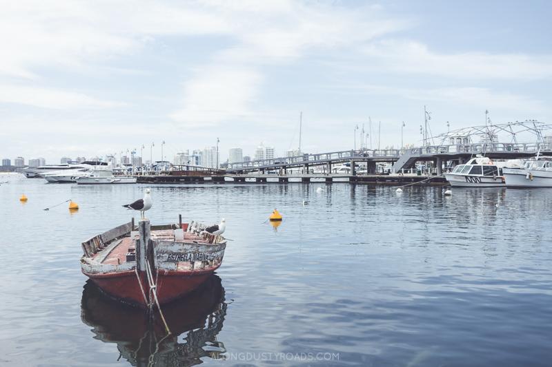 Punta del Este Harbour, Uruguay
