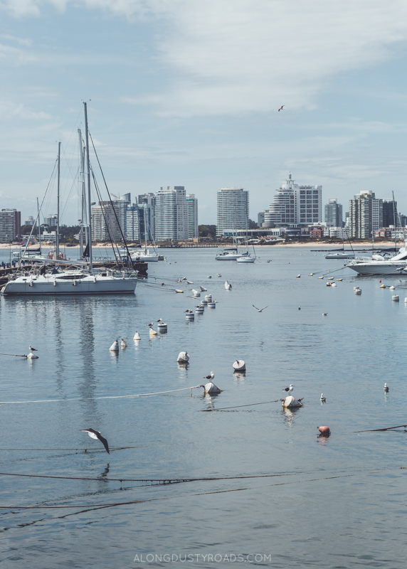Things to do in Punta del Este Uruguay