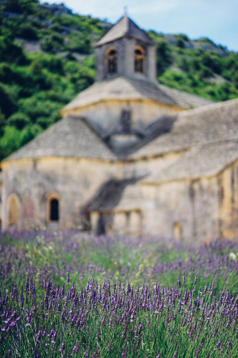 abbaye-de-senanque-1469745.jpg