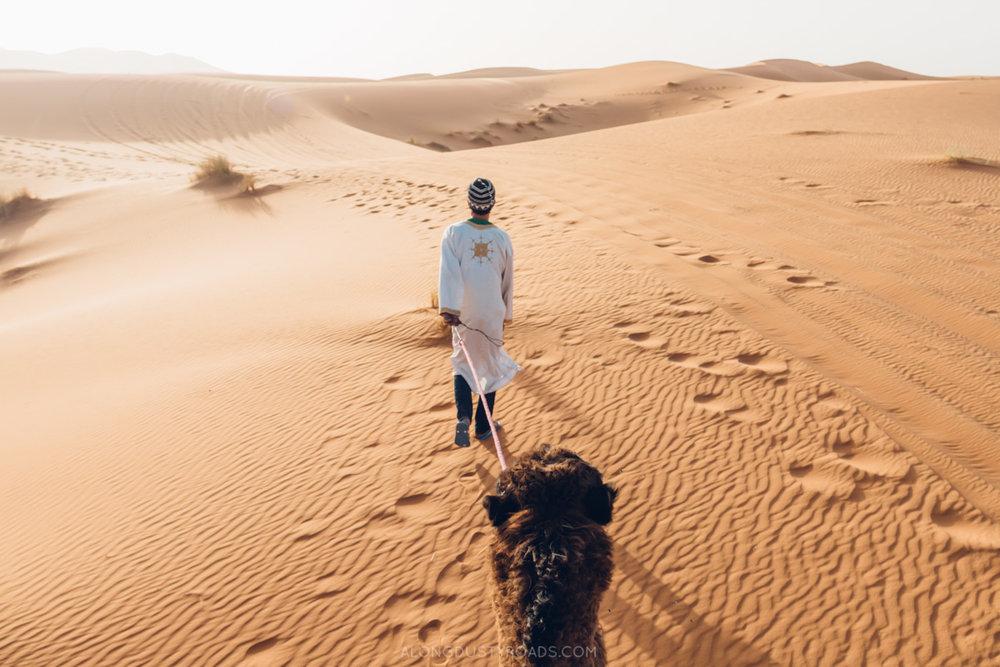 Camel Riding in the Sahara, Merzouga, Morocco