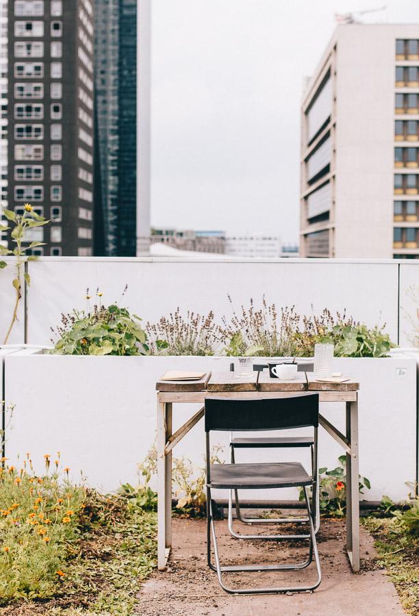 Things to do in Rotterdam - Op Het Dak