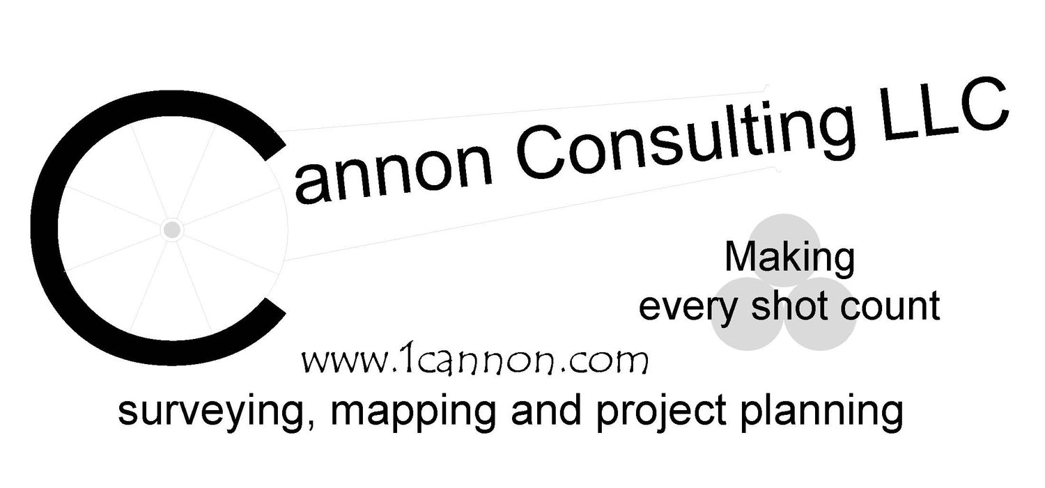 CANNON CONSULTING LLC
