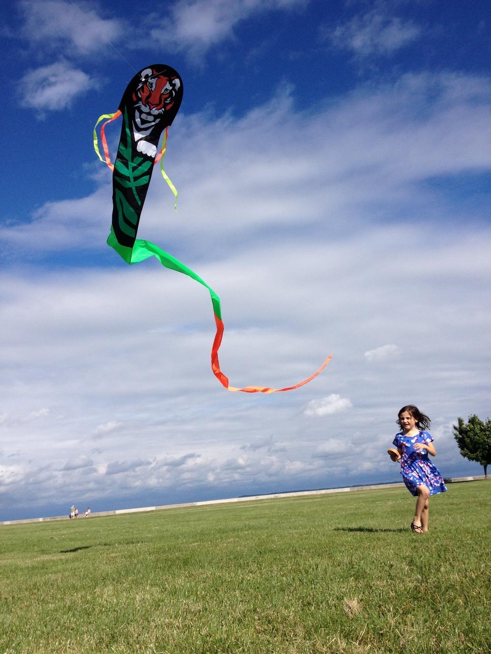 Kite_02_P-Hanchak.jpg