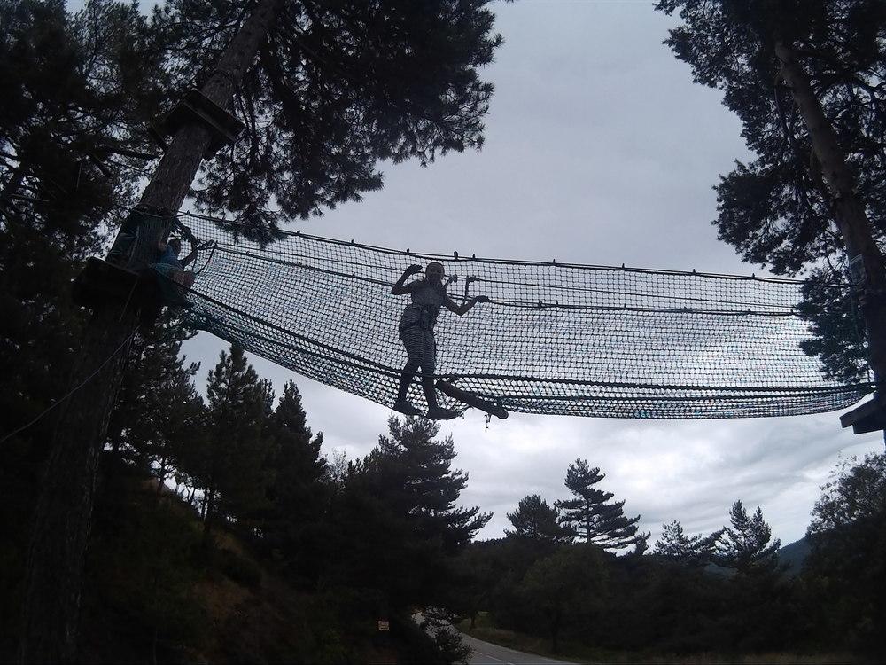 Tree top challenge!
