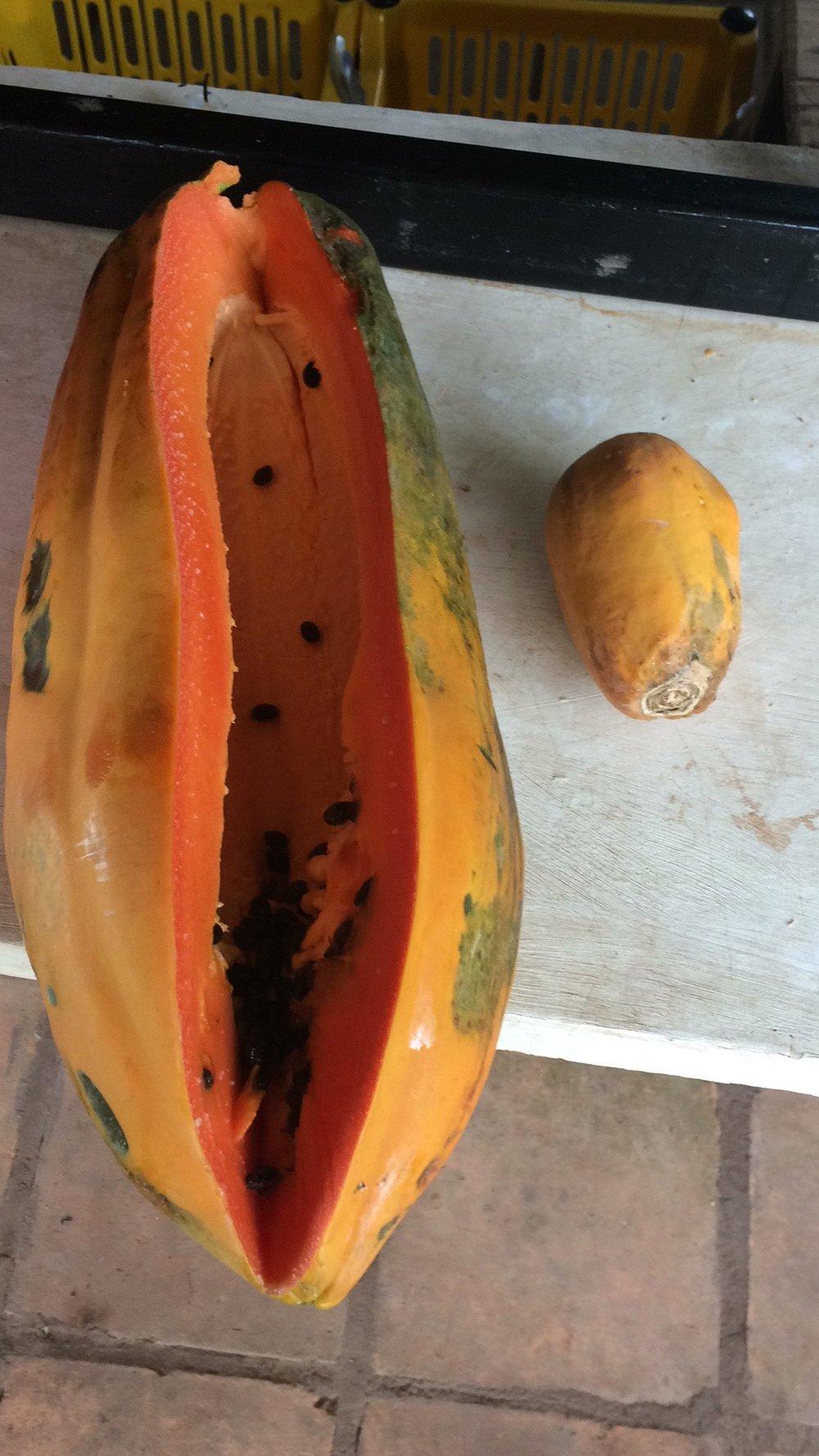 MMMMMMMMM Papaya!!