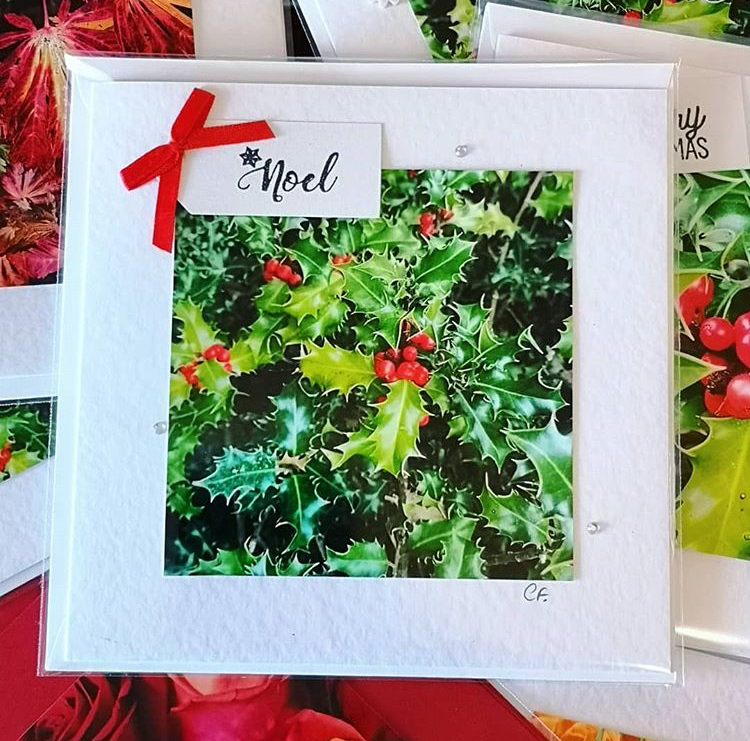 Cornelia's Christmas cards in aid of Street Child. -