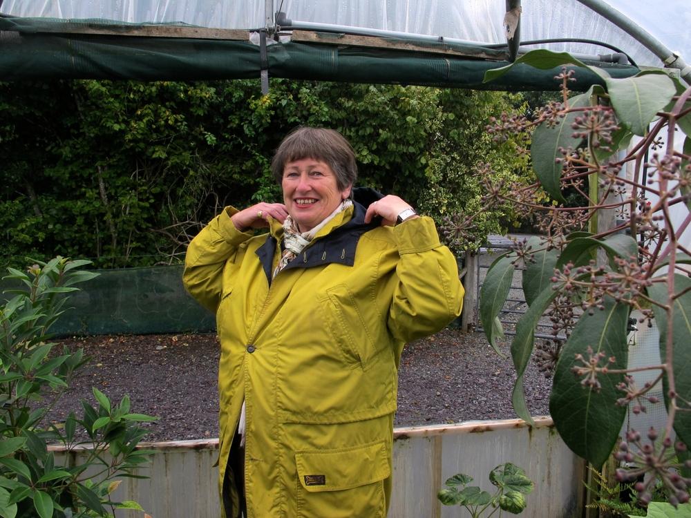 Sue Wynn-Jones on the nursery at Crug Farm Plants