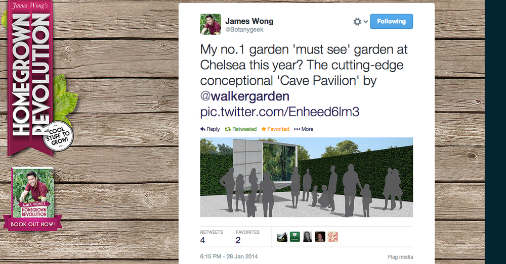 James Wong makes Cave Pavilion his no.1 'must see' garden at Chelsea 2014
