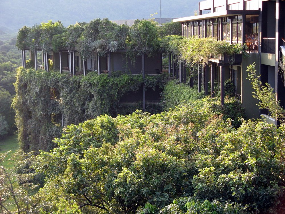 A tenuous relationship between architecture and jungle, Kandalama Hotel, Geoffrey Bawa, Sri Lanka