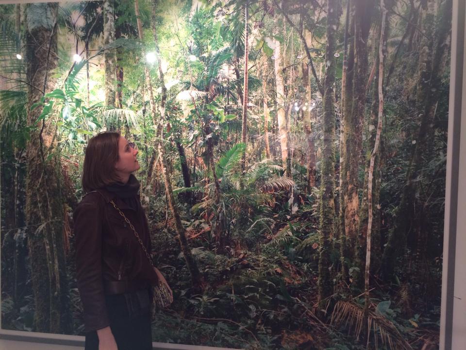 At Sotheby's admiring Thomas Struth, Paradise