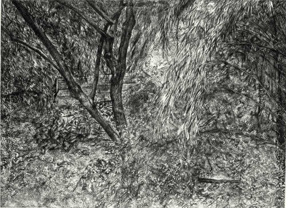Lucien Freud's garden