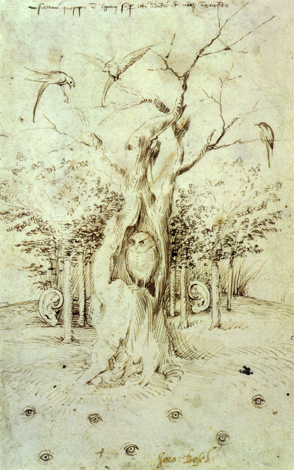 Heironymus Bosch - The Trees Have Ears and the Fields Have Eyes