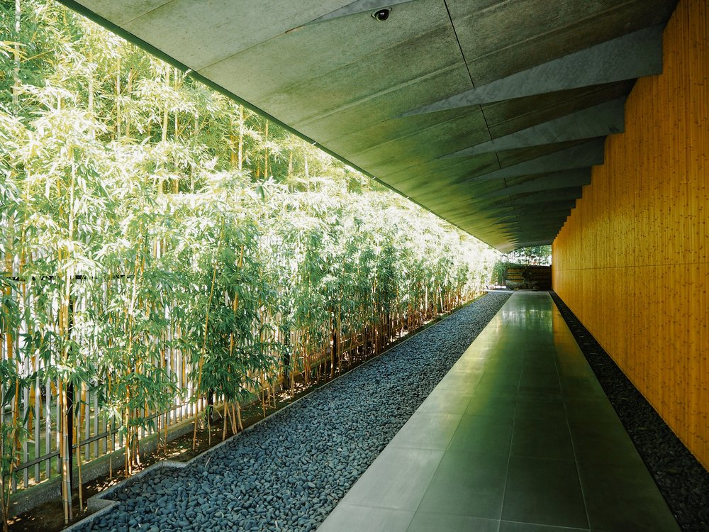 dmo-Tokyo-Finest-Japanese-gardens-03-Nezu-Museum.jpg