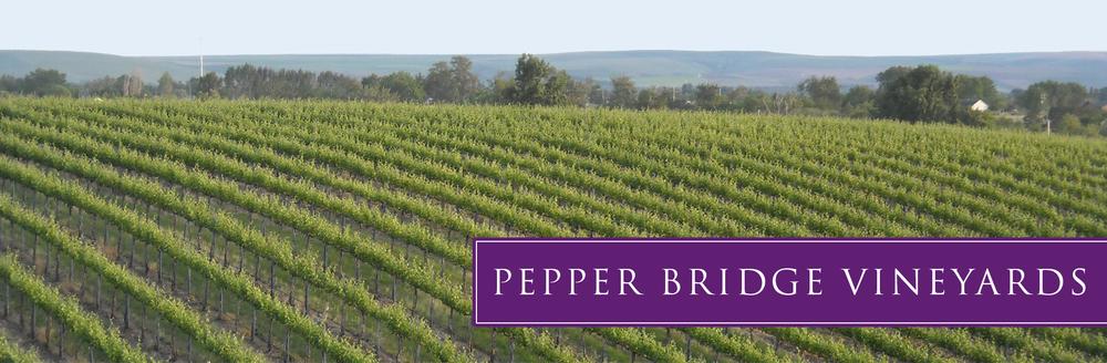 pb-vineyard-01.jpg