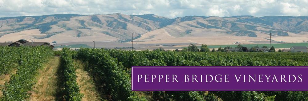 pb-vineyard-03.jpg