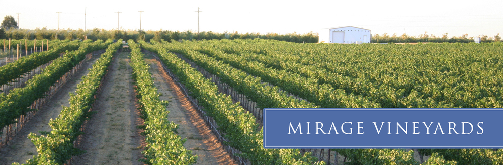mirage-vineyard-05.jpg