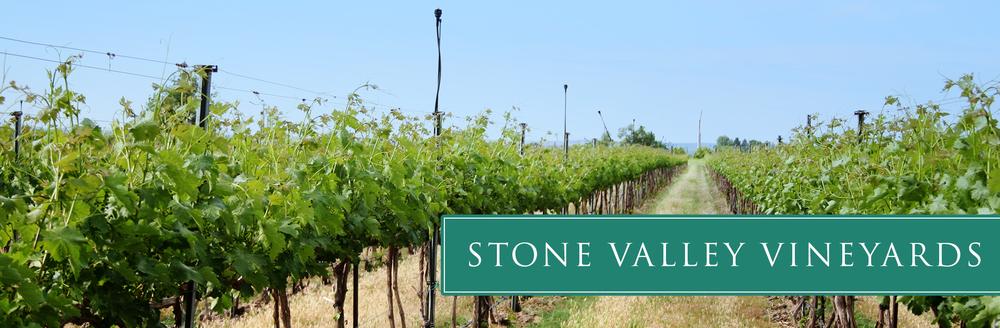 stone-vineyard-01.jpg