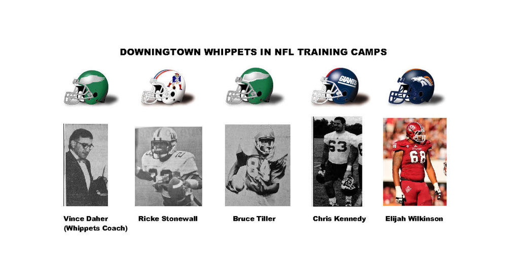 NFL Camp Whippets_Page_2 (Cropped).jpg