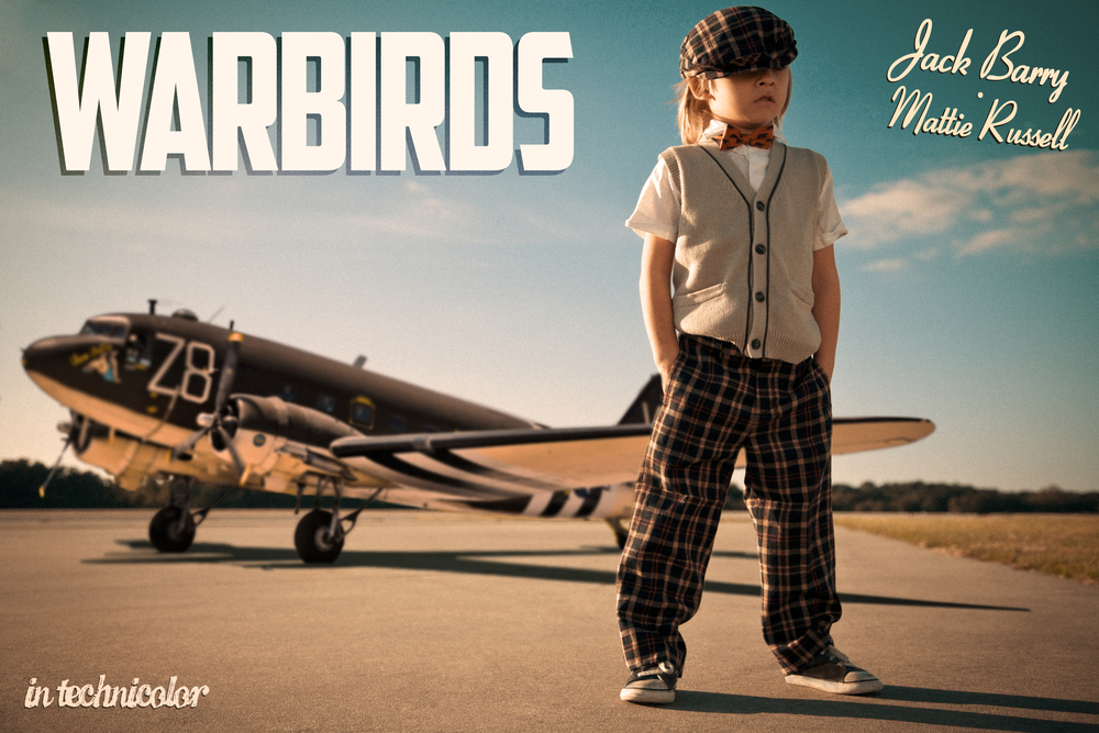 Warbirds - The Movie (kind of..)