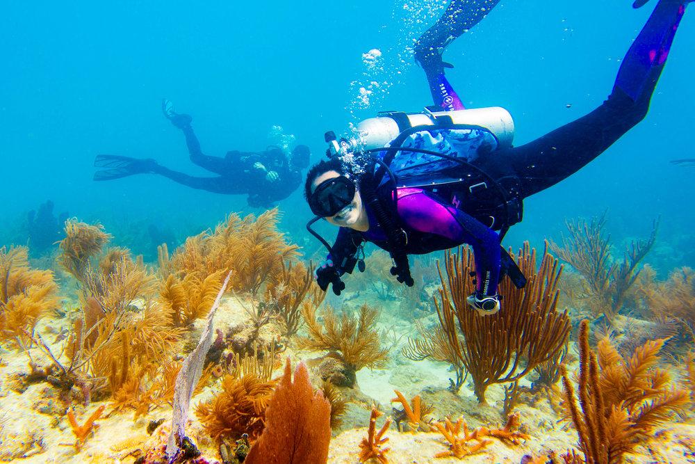 Anglers-Hotel-Reef-ve_steve-boxall-20180614_0049.jpg