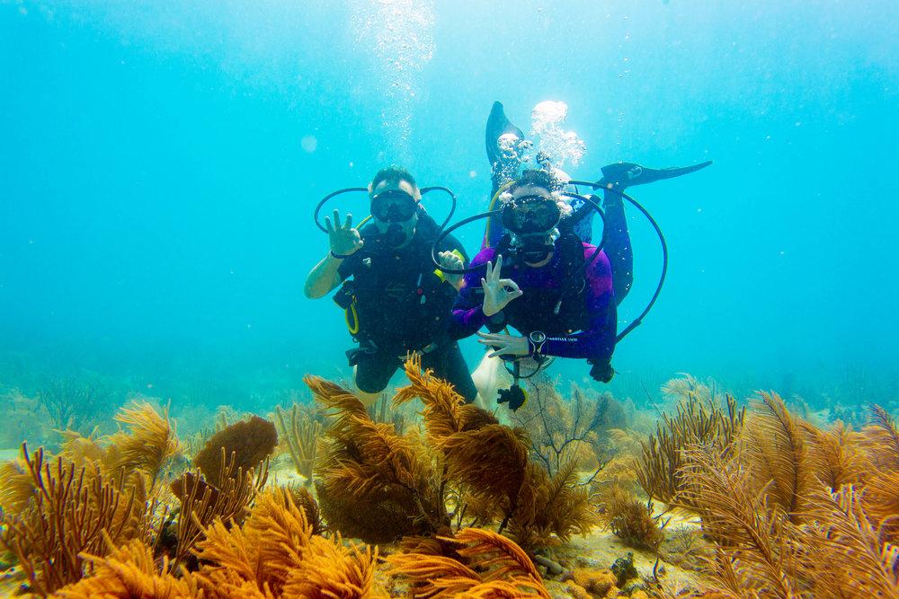 Anglers-Hotel-Reef-ve_steve-boxall-20180614_0100.jpg
