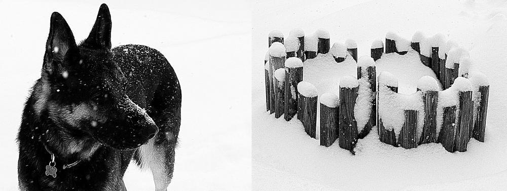 kobe_winter.jpg