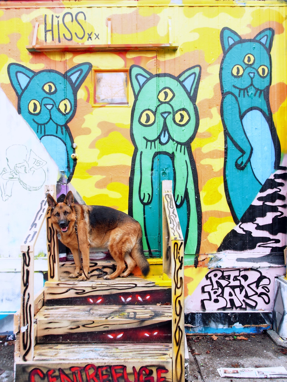 Centre-fuge Public Art Project with  Hissxx's  kitty cats & MaQ!