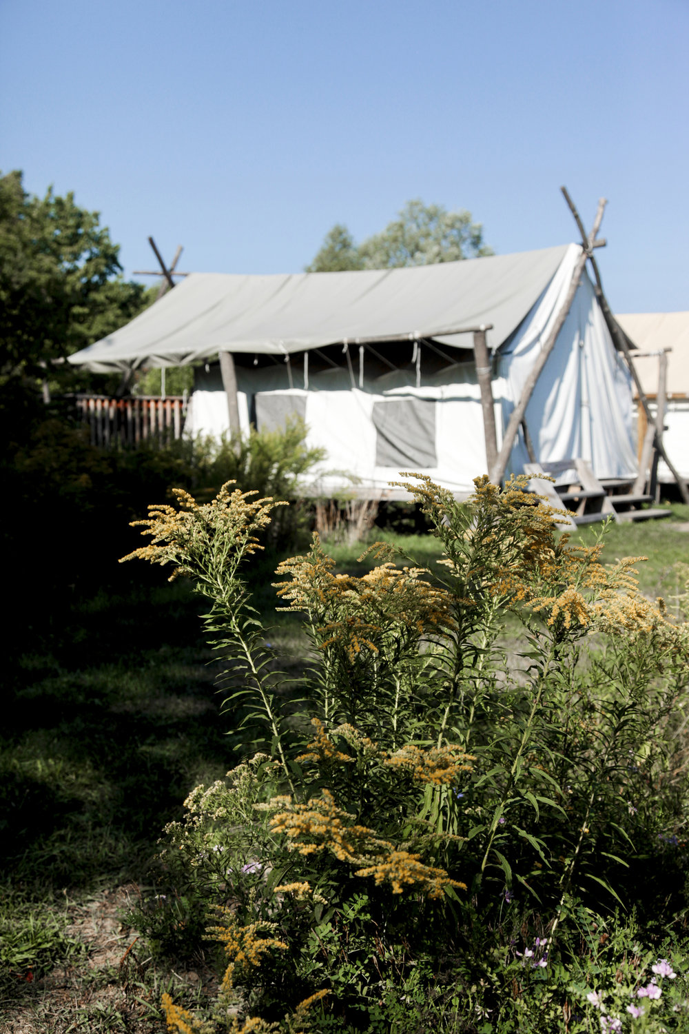 Firelight Camps Safari Tent