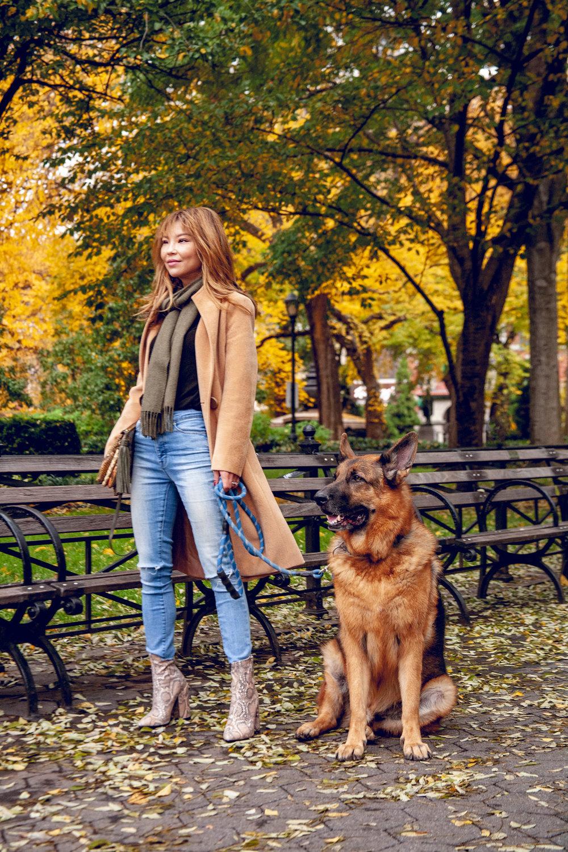 Girl and German shepherd