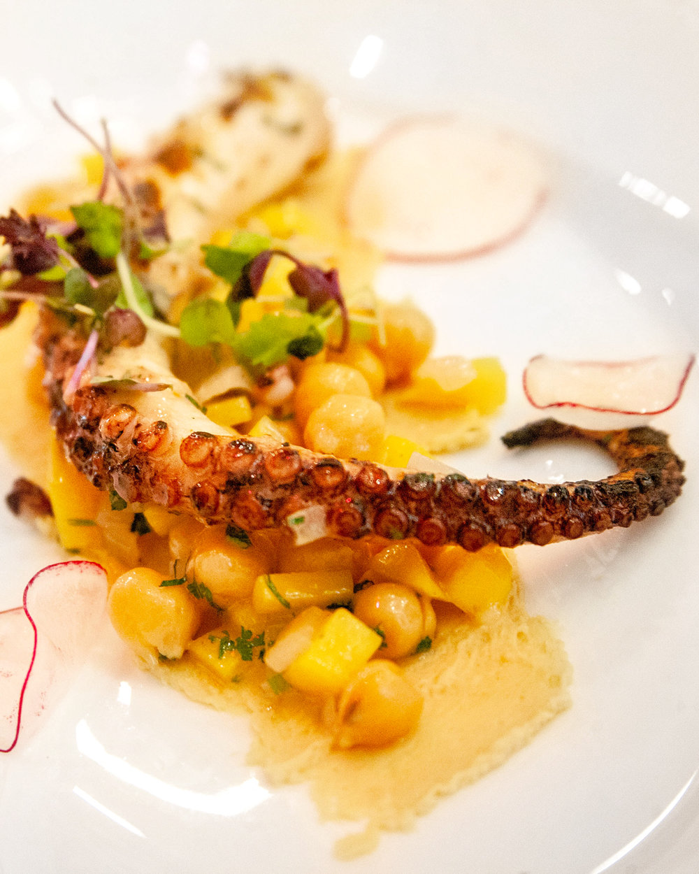 Grilled Octopus appetizer