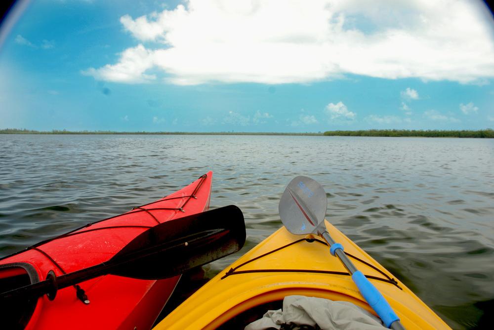 Kayaking.  via Flickr user luckynicholl
