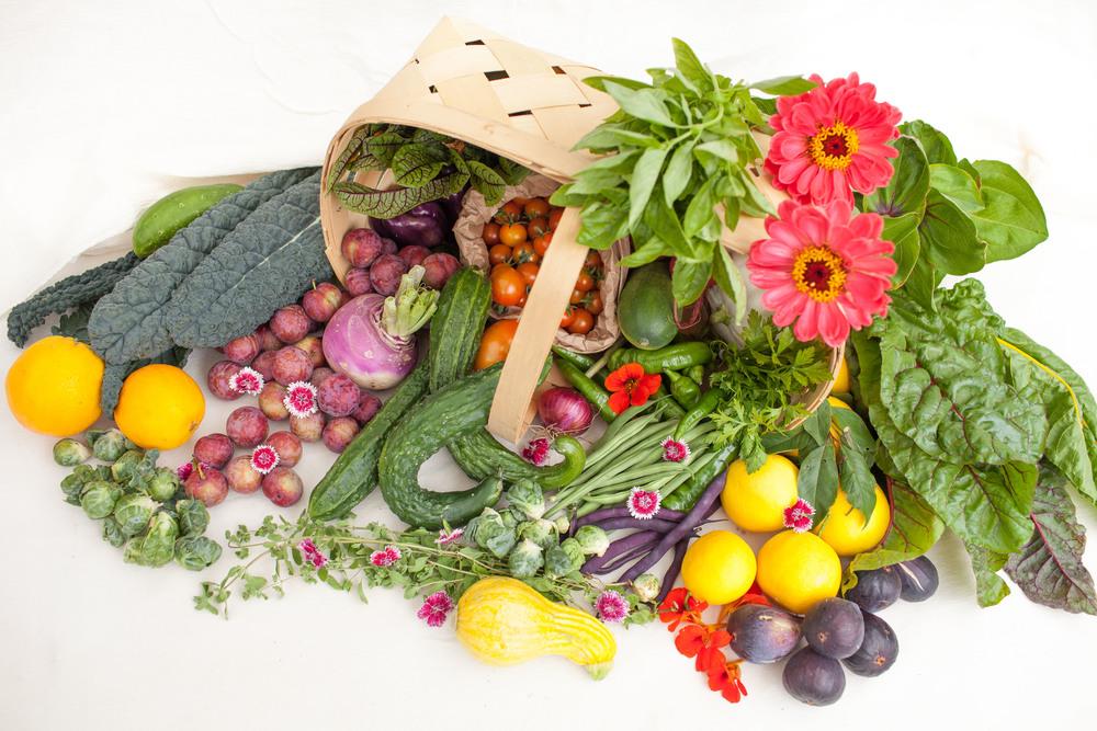 basket-vegetables-1-1024x768.jpg
