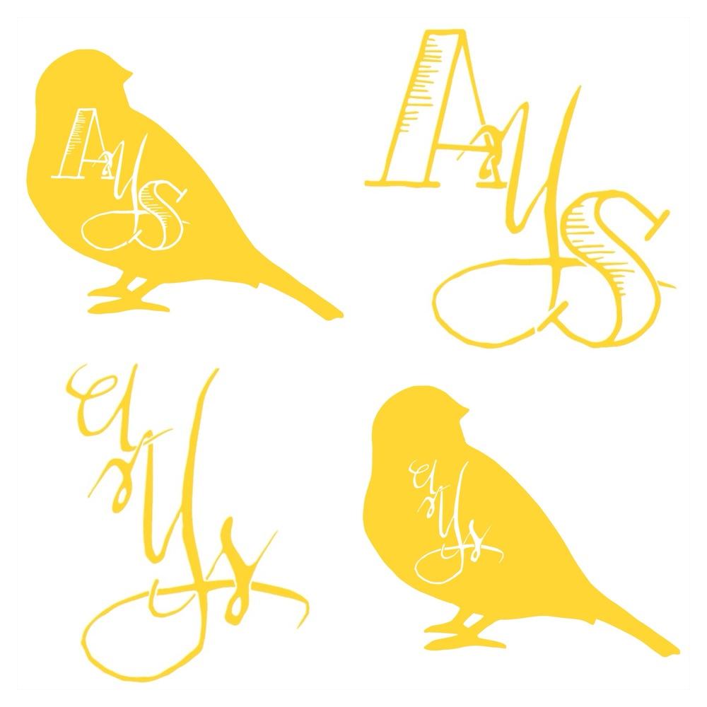 ays2.jpg