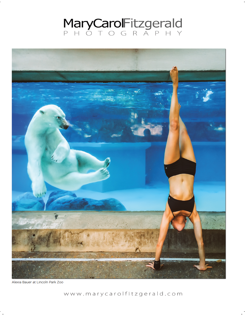Alexia Bauer Yoga - Lincoln Park Zoo - Polar Bear