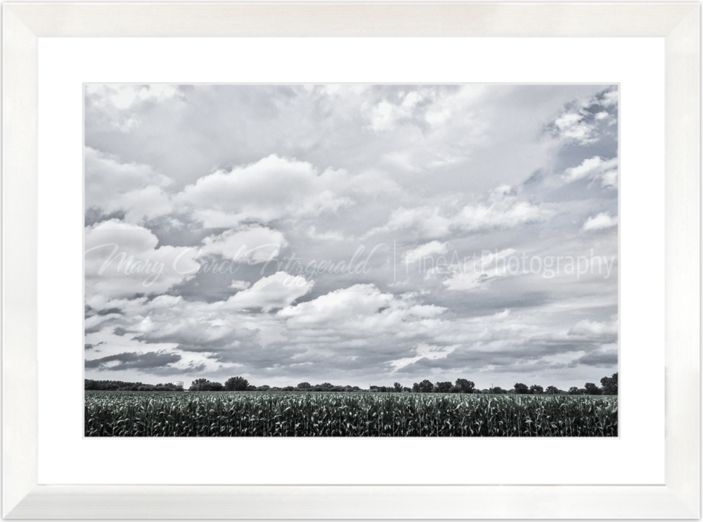 Iowa_34th-Street-Clouds_3109_35x46 (White Frame).png