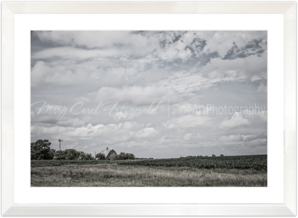 Iowa_Windmill-Barn_9741-40X60 (White Frame).png