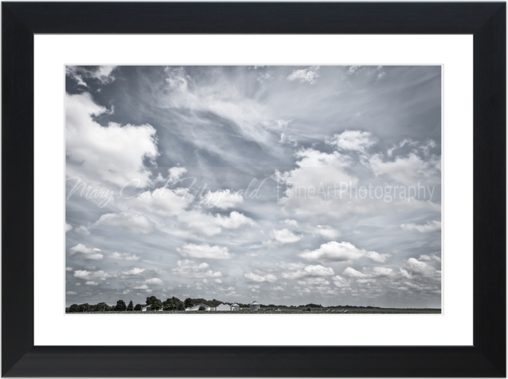 Iowa_Andregg Farm_9553_35x46 (Black Frame).png