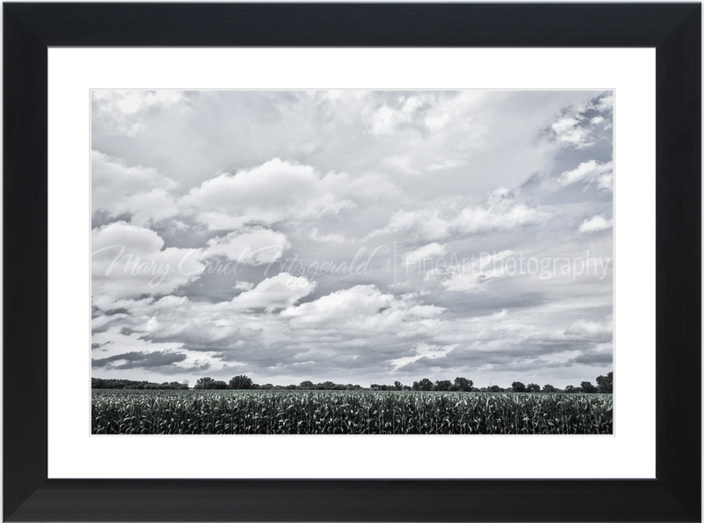 Iowa_34th-Street-Clouds_3109_35x46 (Black Frame).png