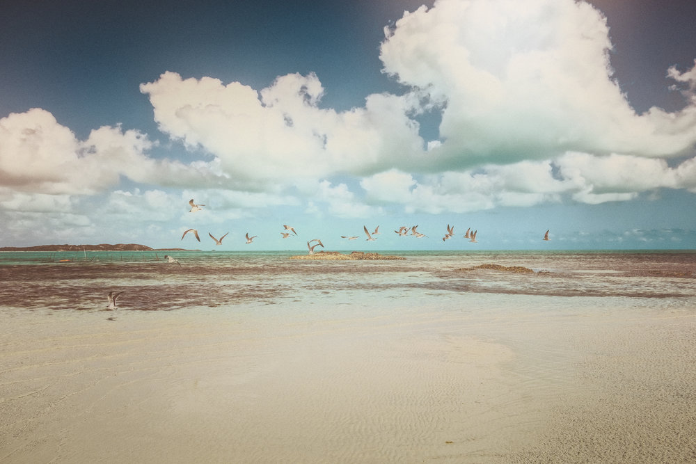 Free to Fly, Turks & Caicos Islands