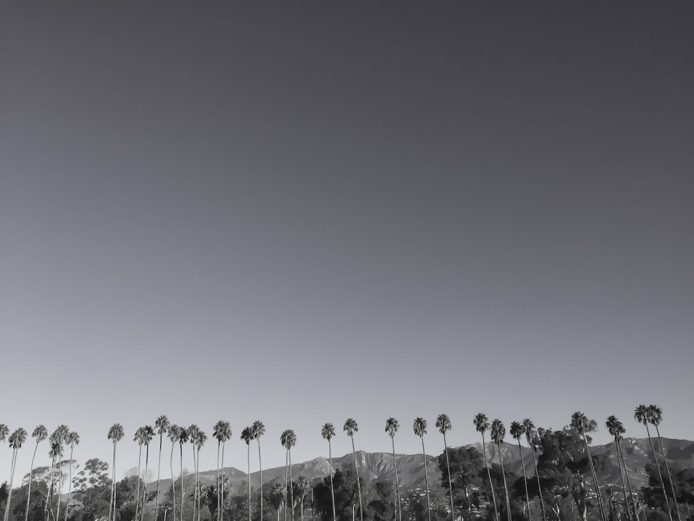 Cali Foothills, 2015, Santa Barbara, California