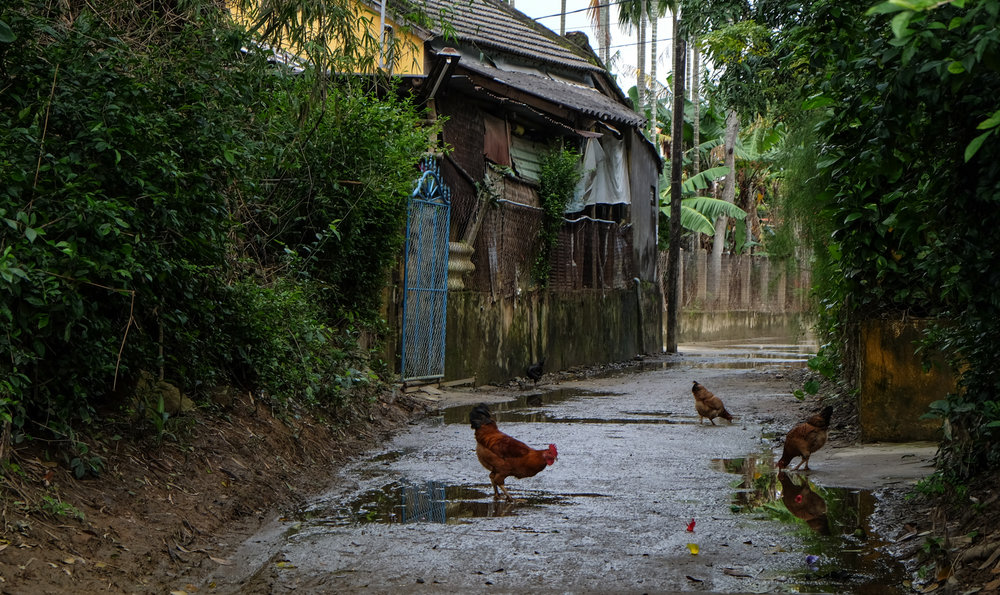 Vietnam-Hoian_6017.jpg