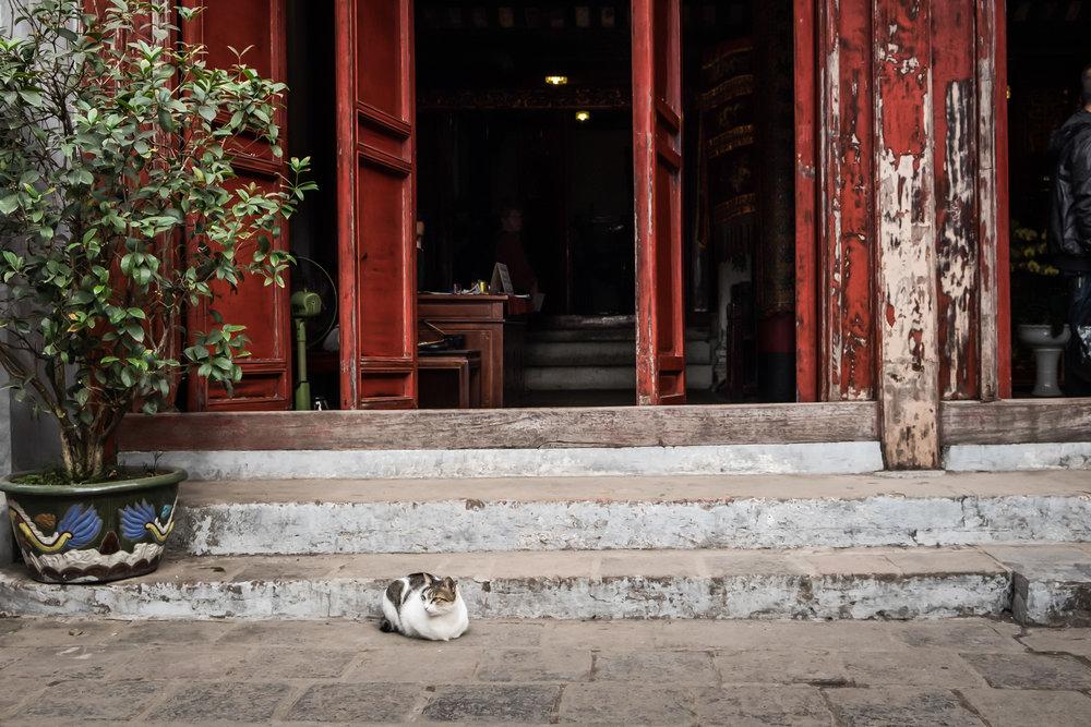 Vietnam-Hanoi_-8.jpg