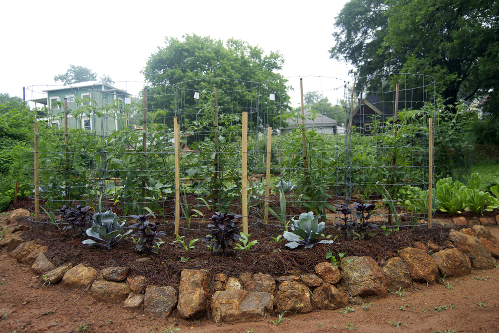 A view of the Handmade Garden, a community space behind Hill First Baptist Church near downtown Athens.