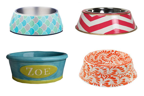 stylish dog food dishes